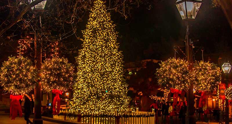 Ανάβει το Χριστουγεννιάτικο Δέντρο στην Καλλιθέα – Συναυλία με την Κατερίνα Στικούδη
